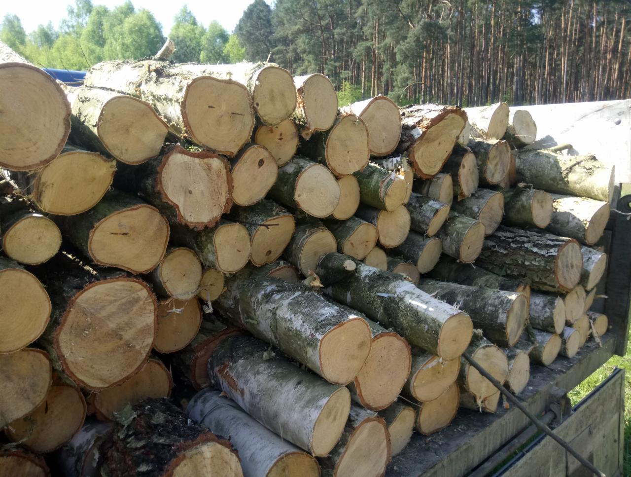C'est reparti pour l'achat de bois de chauffage…